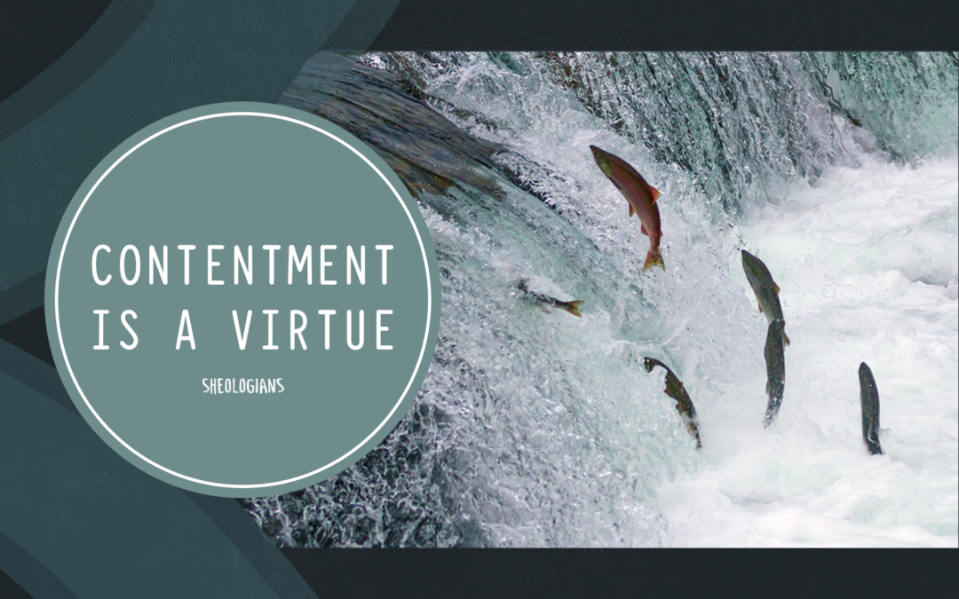 Contentment is a Virtue